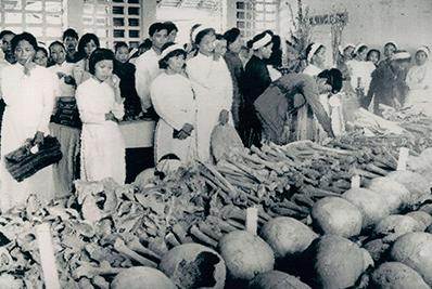 Image result for thảm sát CSVN